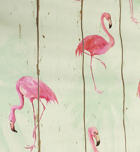263519 Pink Flamingos birds wallpaper