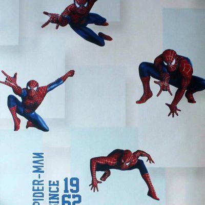 Spider man Cartoon Wallpaper