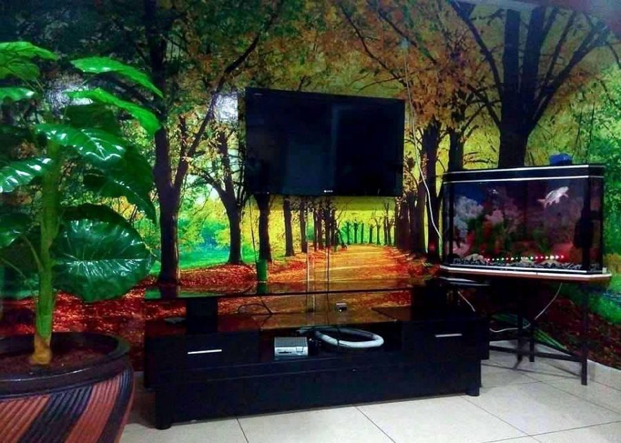 3d Forest Scene Wall Mural
