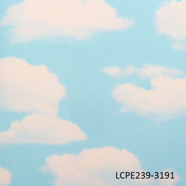 Sky Ceiling Wallpaper CPE239-3191