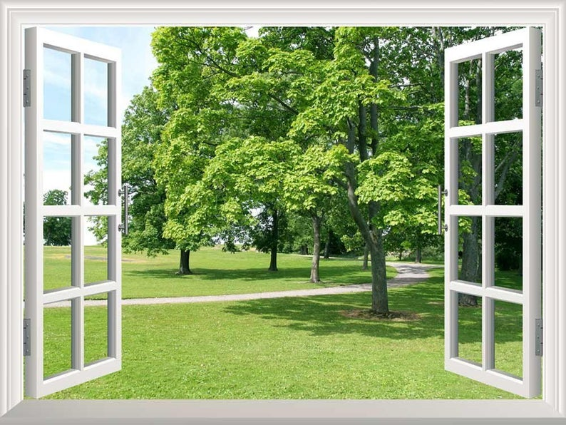 Nature lush green lawn and trees forest scene through the window