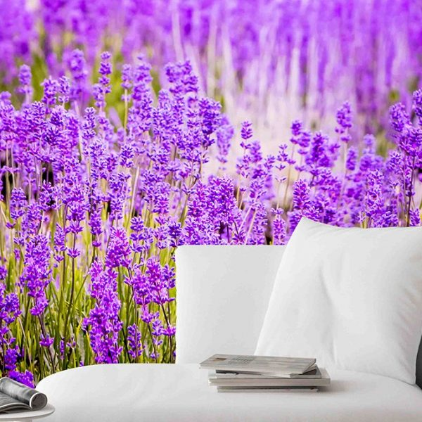 Lavender-Purple-Flower-Mural-Wallpaper