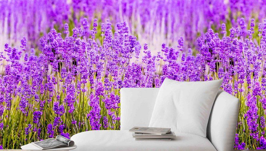 Lavender Purple Flower Full Wall Mural Wallpaper